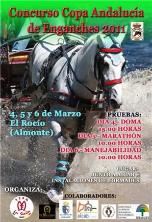 cartel-caballlos-rocio-2011-copia-1