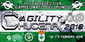 Campeonato Agility