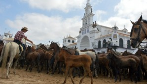 saca-de-las-yeguas-2016-5-ok