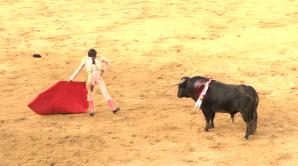 Toros Valverde