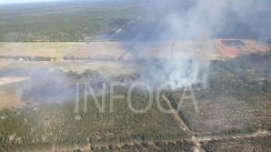 Panoramica-incendio-paraje-Borrachuela-Almonte_1353775135_99726866_667x375