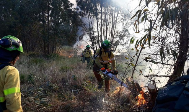 incendio-almonte-mayo-2019-infoca