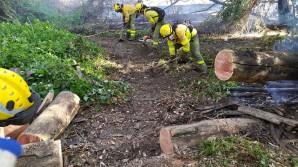 bomberos-forestales-del-infoca