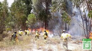 declarado-un-incendio-forestal-en-valverde-del-camino
