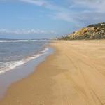 playa-de-donana