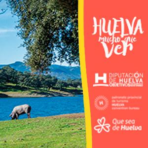 Diputación Turismo Huelva tiene mucho que ver - cerdo
