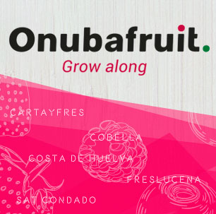 ONUBAFRUIT - ROCÍO 2020